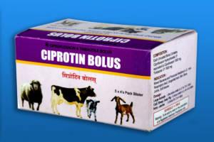 CIPROTIN-BOLUS