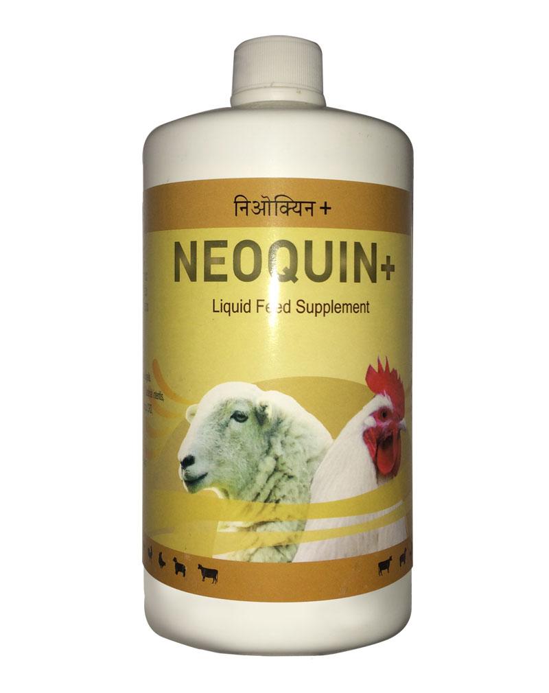 Neoquin